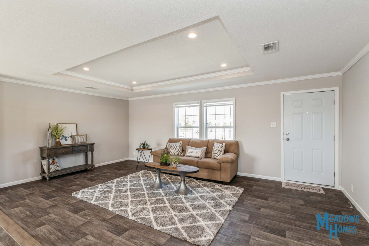 Living Room & Tray Ceiling